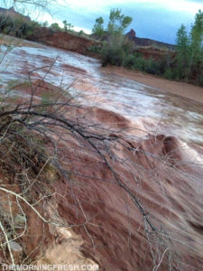A result of the flash flood in Indian Creek.