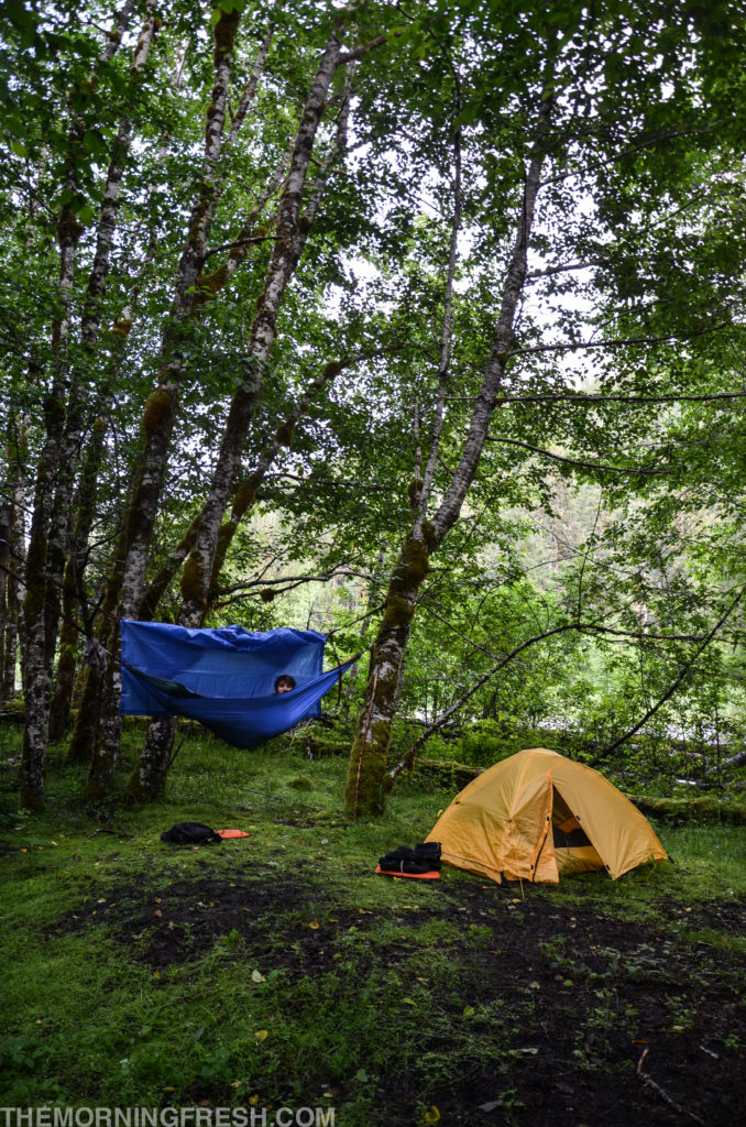 Our camp set up at Lewis Meadows on the Hoh River Trail in Olympic National Park.