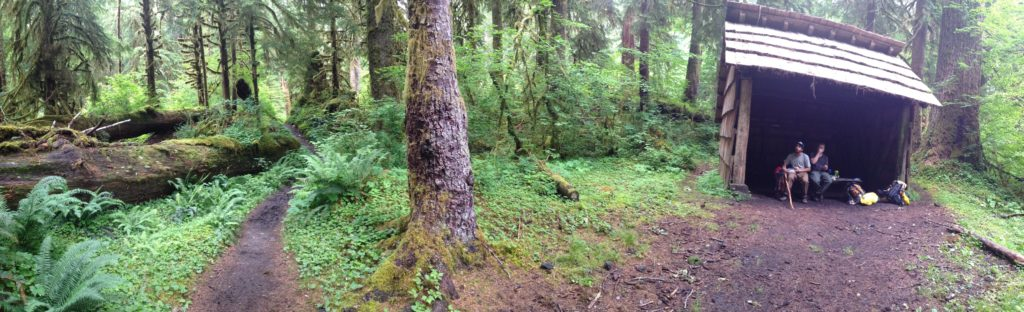A much needed rest area along the Hoh River Trail in Olympic National Park.