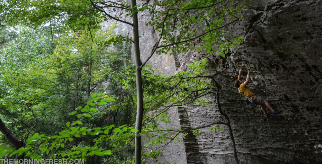 Projecting the classic climb Hippocrite (5.12a) at The Zoo in Red River Gorge.