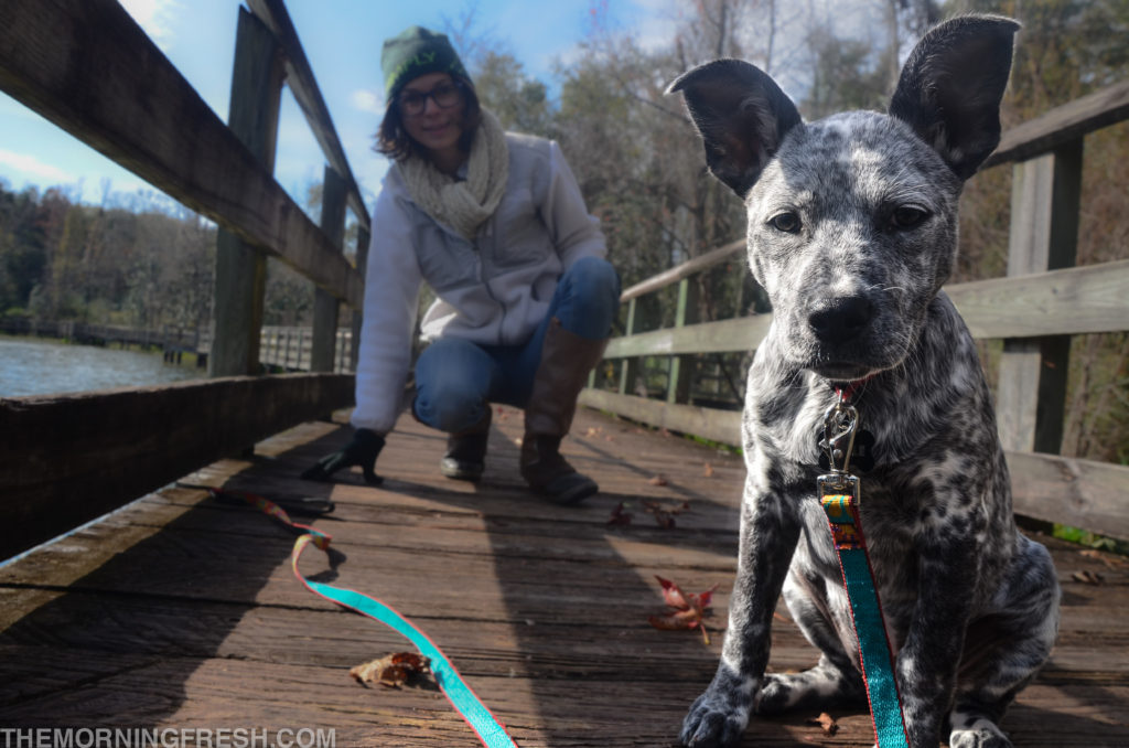 Amble and I pause for a quick photo while walking along the Lake Leon trail at Tom Brown Park in Tallahassee.