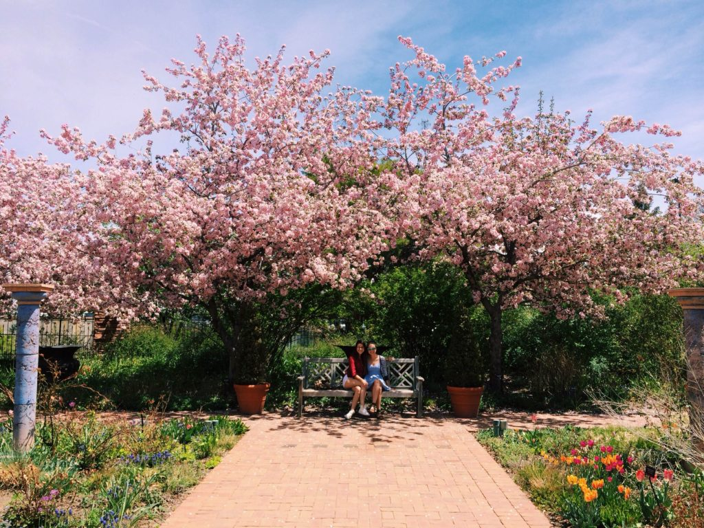 My sister and I at Denver Botanic Gardens.