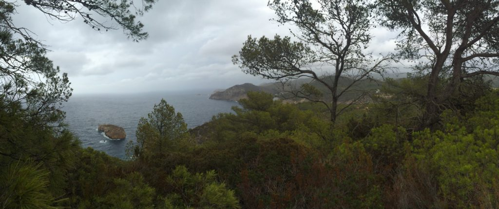 A view worth bushwhacking for at Na Xemena in Ibiza.
