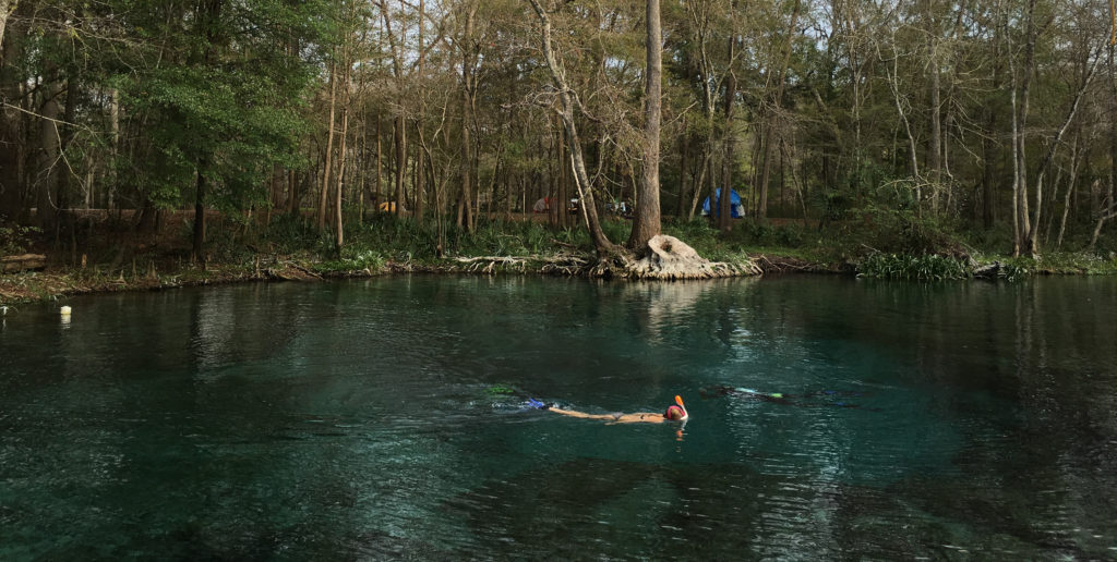 Swimming at Ginnie Springs.