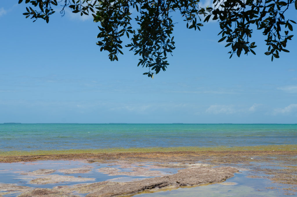 Camping at Bahia Honda State Park in the Florida Keys.